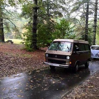 bears van